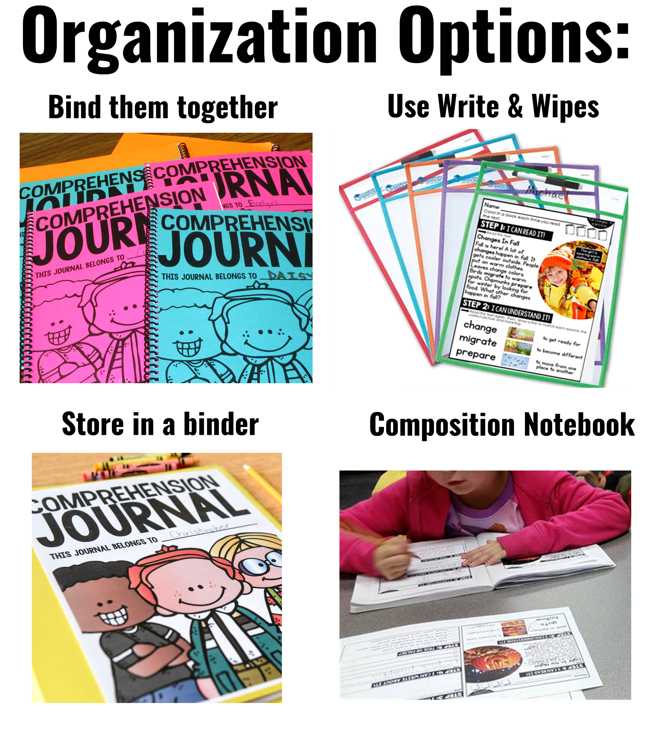 organization options 1