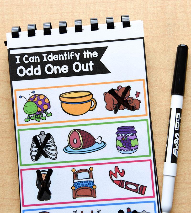 Identify the odd picture